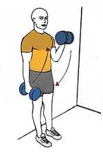 Desarrollar bíceps grandes. Curl apoyado en la pared