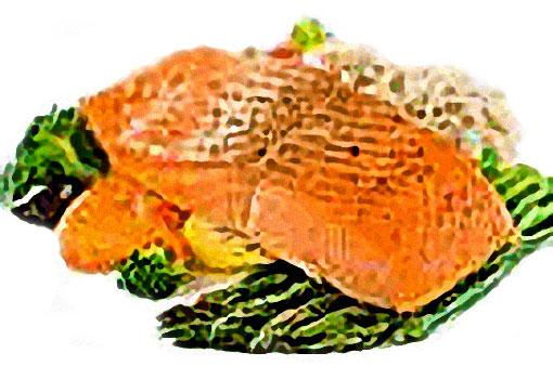 Alimentos para aumentar gluteos - libro gluteos de escandalo. Pescados y verduras