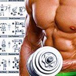 10 Consejos para Desarrollar Músculos en Casa