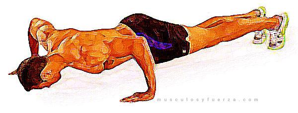 Tipos de Flexiones. Plancha con Manos Separadas