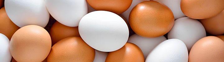 vitamina-D-huevos-pescado